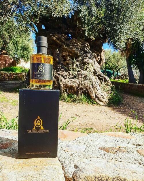 Best olive oil company in UK