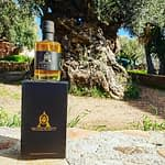 Best olive oil company in UK